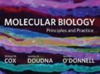 Molecular Biology - Principles and Practice